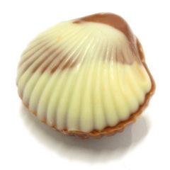 Zeevruchten coquilles (ゼイフルトゥンコキーユ)
